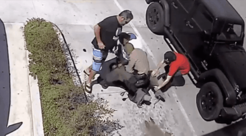 WATCH: Amidst Anti-Blue Times, Good Citizens Help Rookie Officer Make Arrest